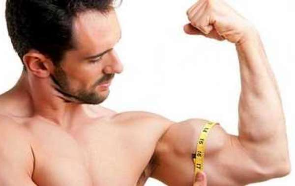 Precisely how to Build Lean muscle Representing Slim Males